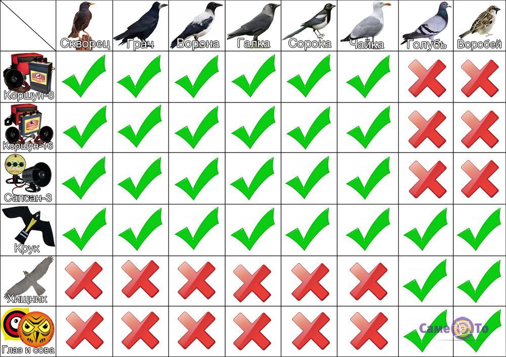 Визуальные отпугиватели птиц своими руками