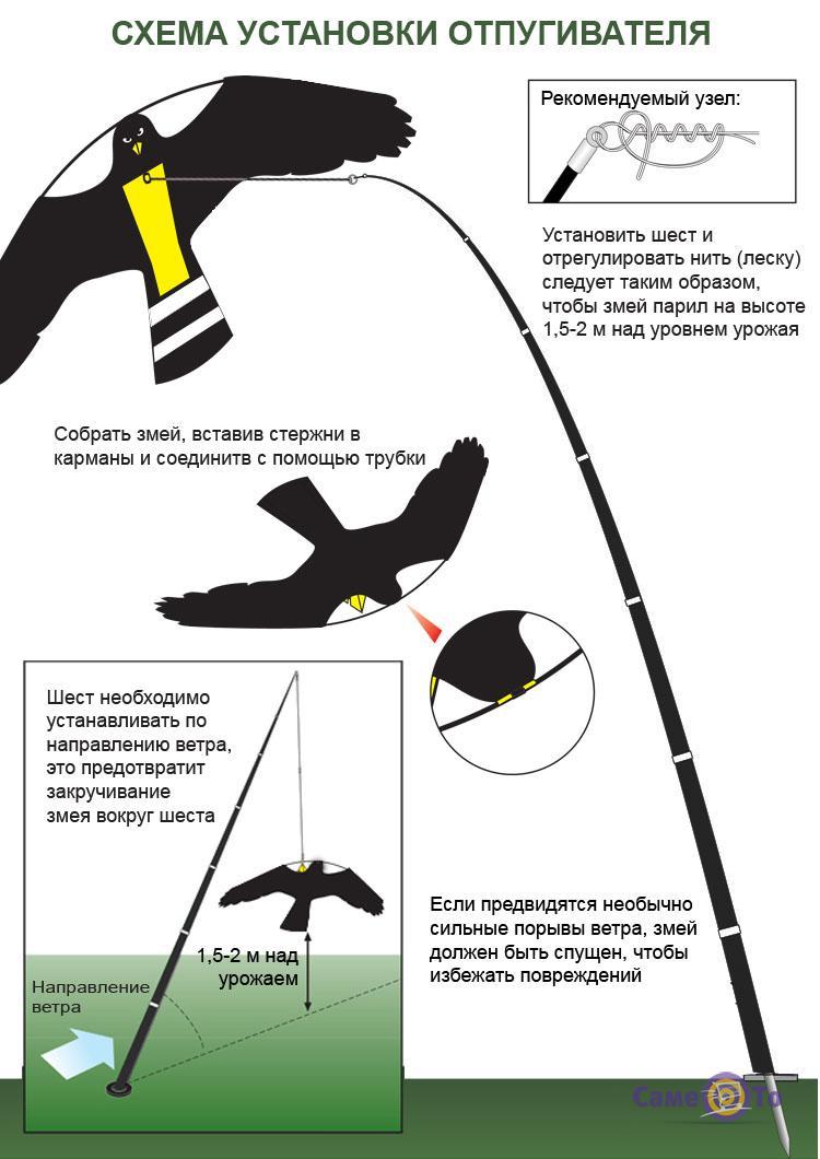 Отпугивание птиц своими руками