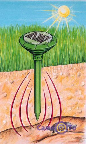 купить отпугиватель грызунов на солнечной батарее