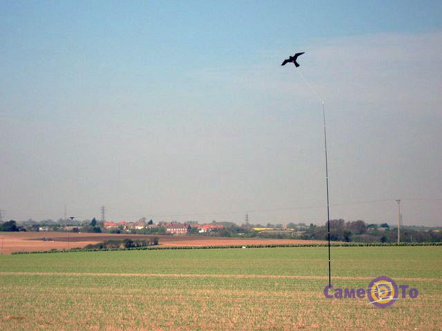 Отпугиватель птиц Крук визуальный (воздушный змей)