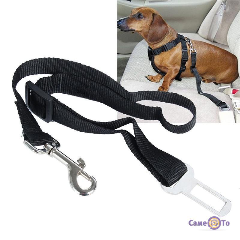 Ремень безопасности для собак и кошек в авто