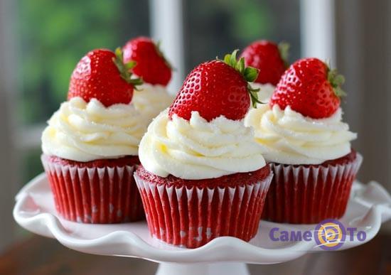 Плунжер-бур для капкейков, кексов, маффинов Cupcake Plunger