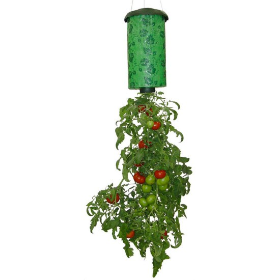 ����������� ��������� ���� - Upside Down Tomato Planter