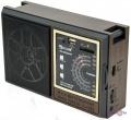 Портативний цифровий мультимедійний радіоприймач Golon RX-9922UAR з USB