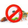 Засоби від комах та гризунів, пастки, приманки