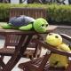 Нічник «Черепаха» проектор зоряного неба (Nighttime Turtle)
