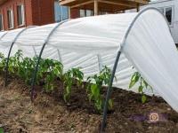 Парник-теплица для огорода и сада Подснежник, 6 метров