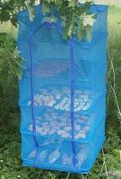 Сітка для сушіння овочів, фруктів, ягід, риби на 5 полки