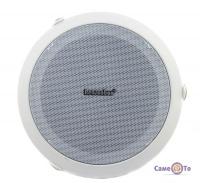 Стельовий динамік Reasonbox Celling Speaker RX-C601 (вбудована акустика)