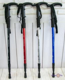 Палки для скандинавської ходьби Energia 135 см (1 шт)