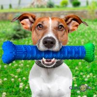 Косточка для чистки зубов собак Chewbrush